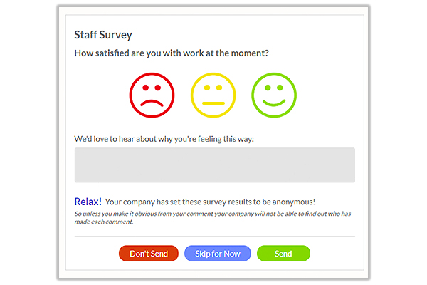 The best staff surveys for small companies