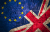 What does Brexit mean for the UK's small business employers?